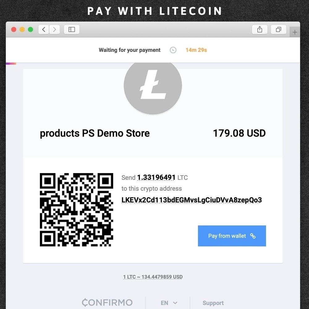 Confirmo (BitcoinPay) accept bitcoins or litecoins