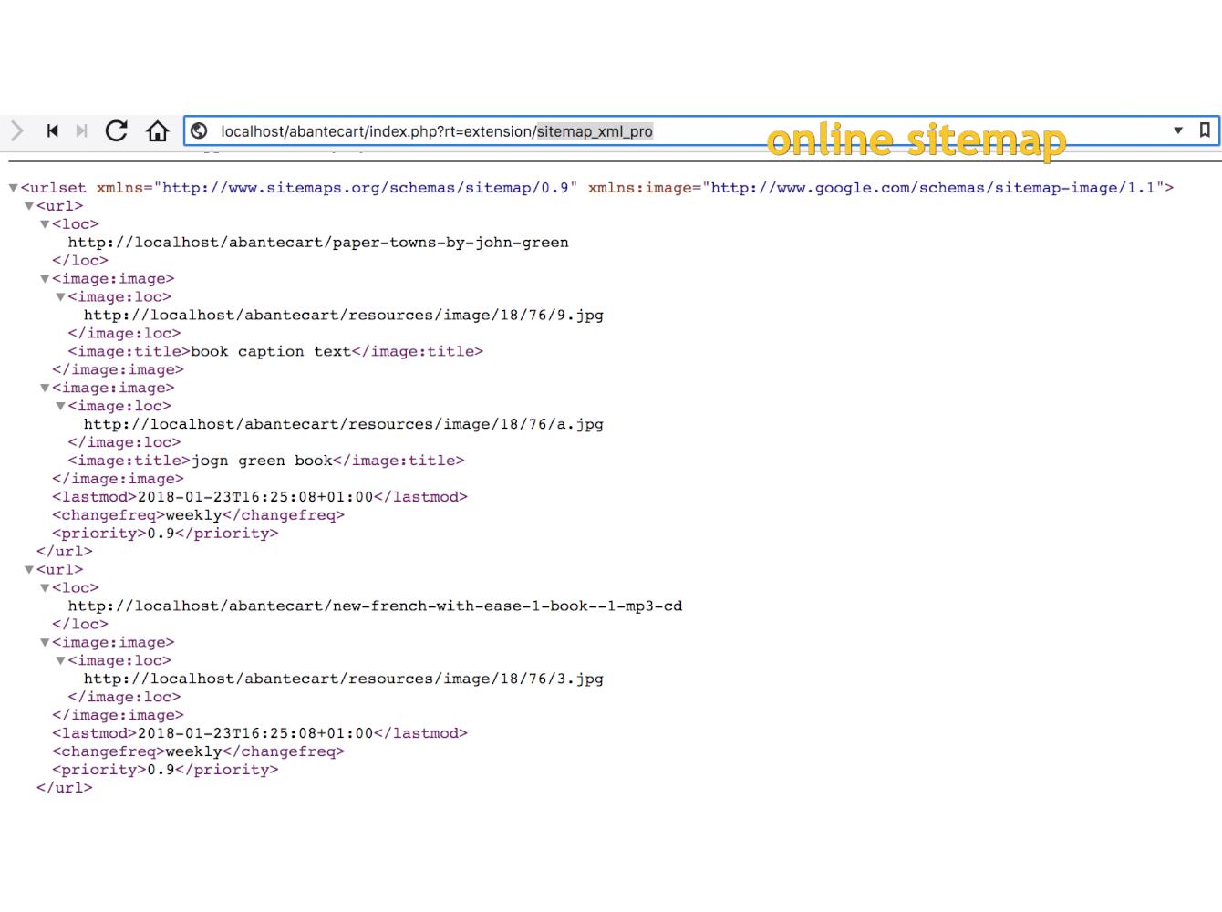 Google Sitemap PRO: online & offline